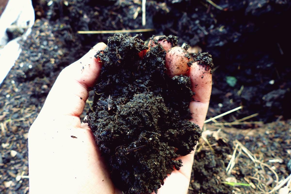 Kompost Anlegen Gemüsegarten