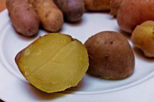 Kartoffelsorten-für-Garten-Ackersegen