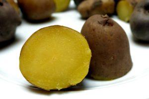Kartoffelsorten-für-Garten-Nicola