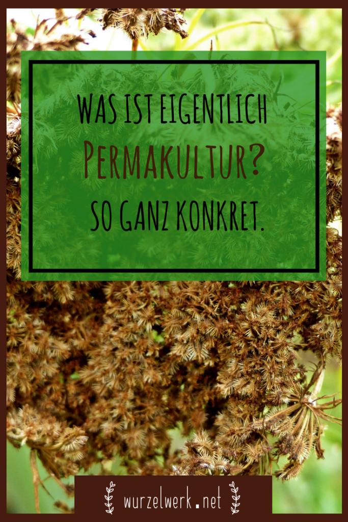 Wie kann man Permakultur-Prinzipien ganz konkret im Garten / auf dem Balkon und darüber hinaus umsetzen? Wie kann man ein Permakultur-System anlegen? Ich begebe mich auf die Suche nach Antworten auf die Frage, was Permakultur / Permaculture eigentlich ist und wie man sie in die Praxis umsetzt. Konkrete Ideen zu Hochbeet, Hügelbeet, Waldgarten, Sonnenfalle und Co. #Permakultur #Selbstversorger #Gemüsegarten #Permaculture #Selbstversorgung