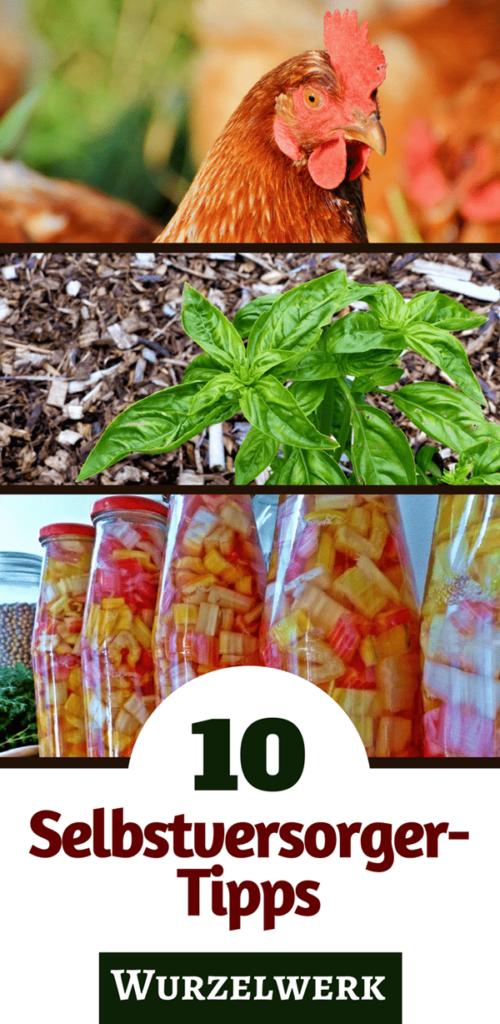 10 Tipps für Selbstversorger: Wie du Gemüse anbaust, einen Wintervorrat anlegst und welche Tiere sich für Anfänger am besten eignen.