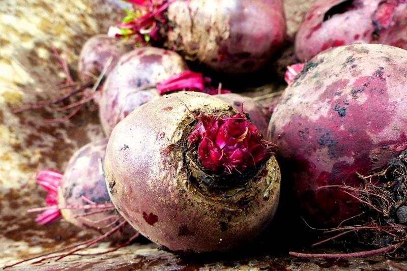 pflegeleichter-Gemüsegarten-wenig-Aufwand