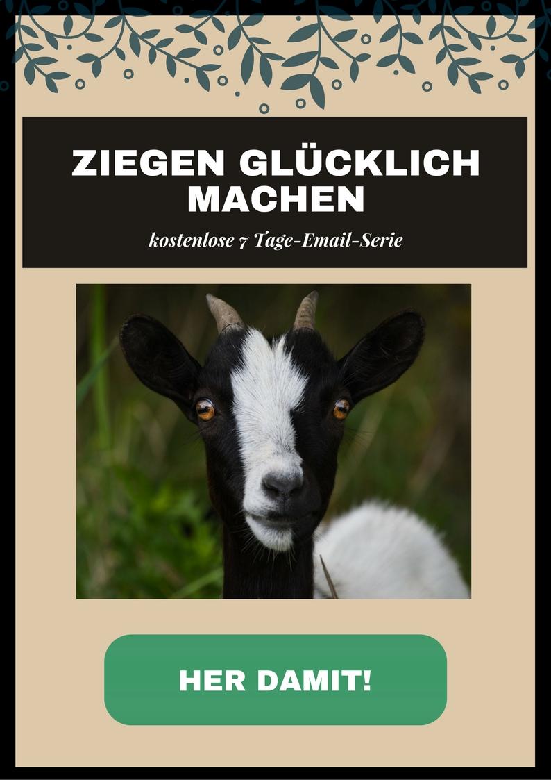 Ziegen halten online Kurs