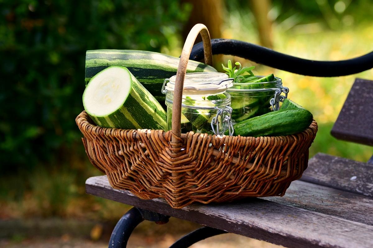 Gemüse fermentieren Zucchini