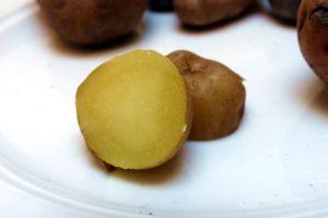 Kartoffelsorten-für-Garten-Aeggeblomme