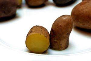 Kartoffelsorten-für-Garten-La-Ratte