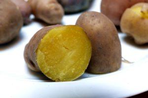 Kartoffelsorten-für-Garten-Mayan-Gold