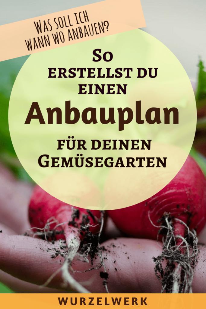 So erstellst du einen Anbauplan, mit dem du das ganze Jahr über frisches Gemüse aus dem eigenen Garten ernten kannst. #Garten #Gemüsegarten