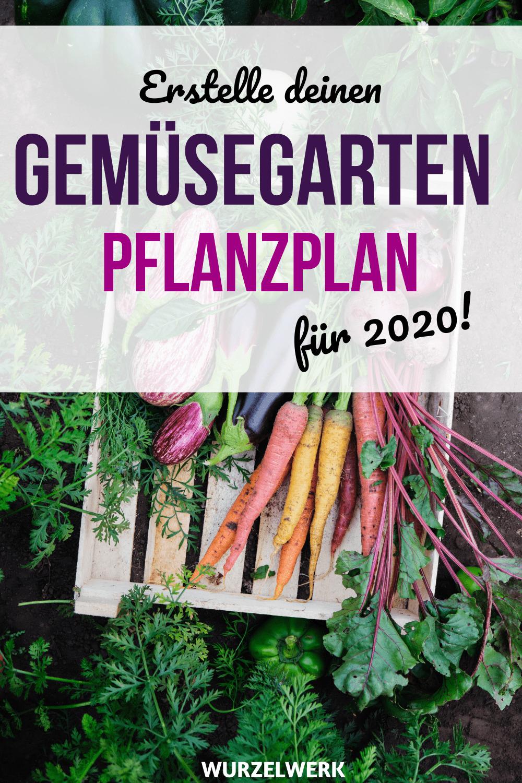 Anbauplan für den Gemüsegarten erstellen