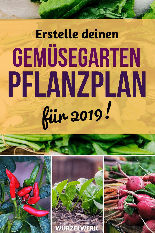 Wie du einen Anbauplan für deinen Gemüsegarten erstellst! Hier ist eine Schritt-für-Schritt-Anleitung für alle, die dieses Jahr ihr eigenes Gemüse anbauen möchten und von Mischkultur, Fruchtfolge etc. überfordert sind. Das ist alles gar nicht so schwer. Mach einfach mit und am Ende ist der Pflanzplan für deinen Nutzgarten fertig! #Garten #Nutzgarten #Wurzelwerk
