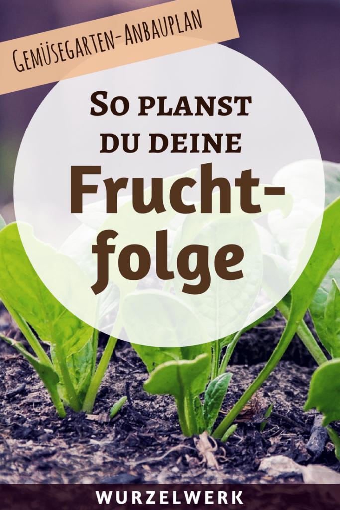 Gut gemocht Fruchtfolge planen im Gemüsegarten – Starkzehrer, Mittelzehrer WZ21