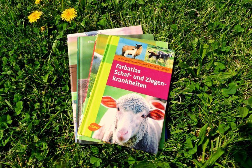 Bücher Ziegen halten Ziegenhaltung