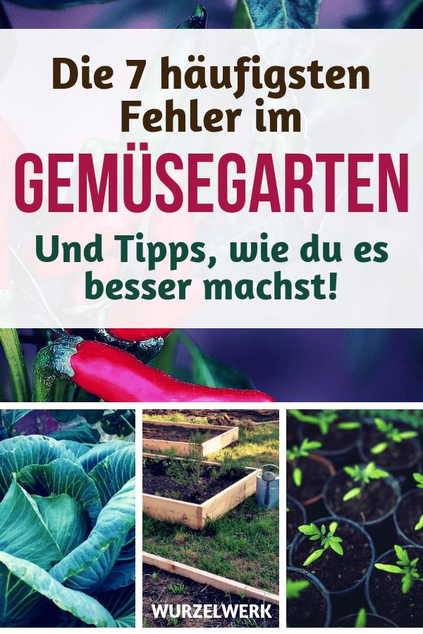 Die 7 häufigsten Fehler im Gemüsegarten - und Tipps, wie du es besser machst! Das solltest du wirklich vermeiden, wenn du einen Gemüsegarten anlegen / gestalten und Gemüse anbauen willst. Der größte Fehler vorweg: Niema... #Garten #Wurzelwerk #Gemüsegarten #Selbstversorgung