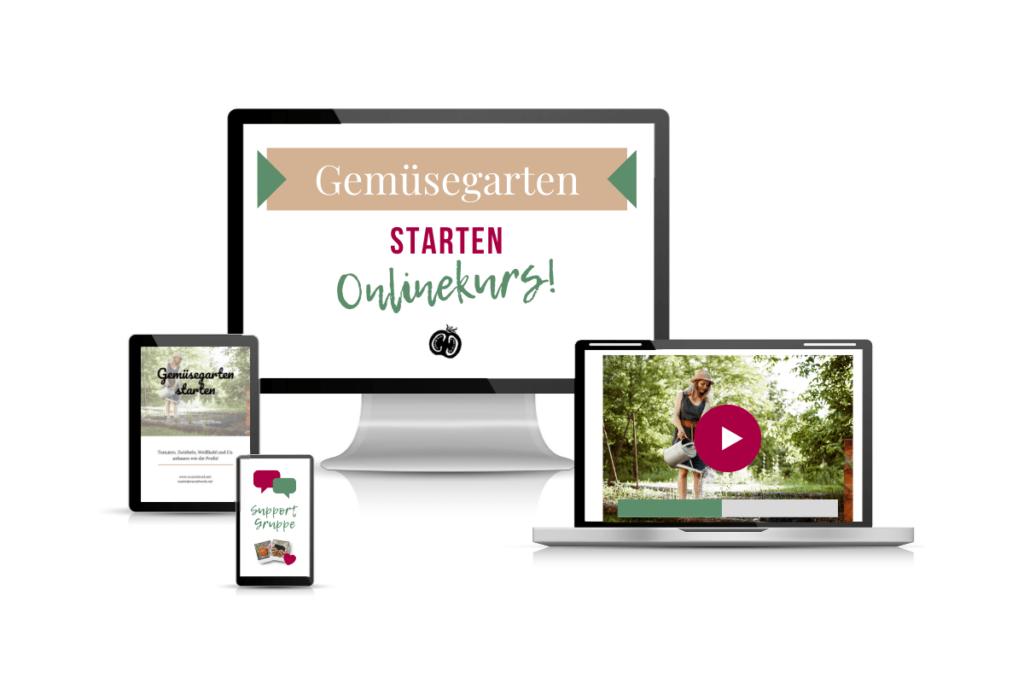 Gemüsegarten starten-Onlinekurs