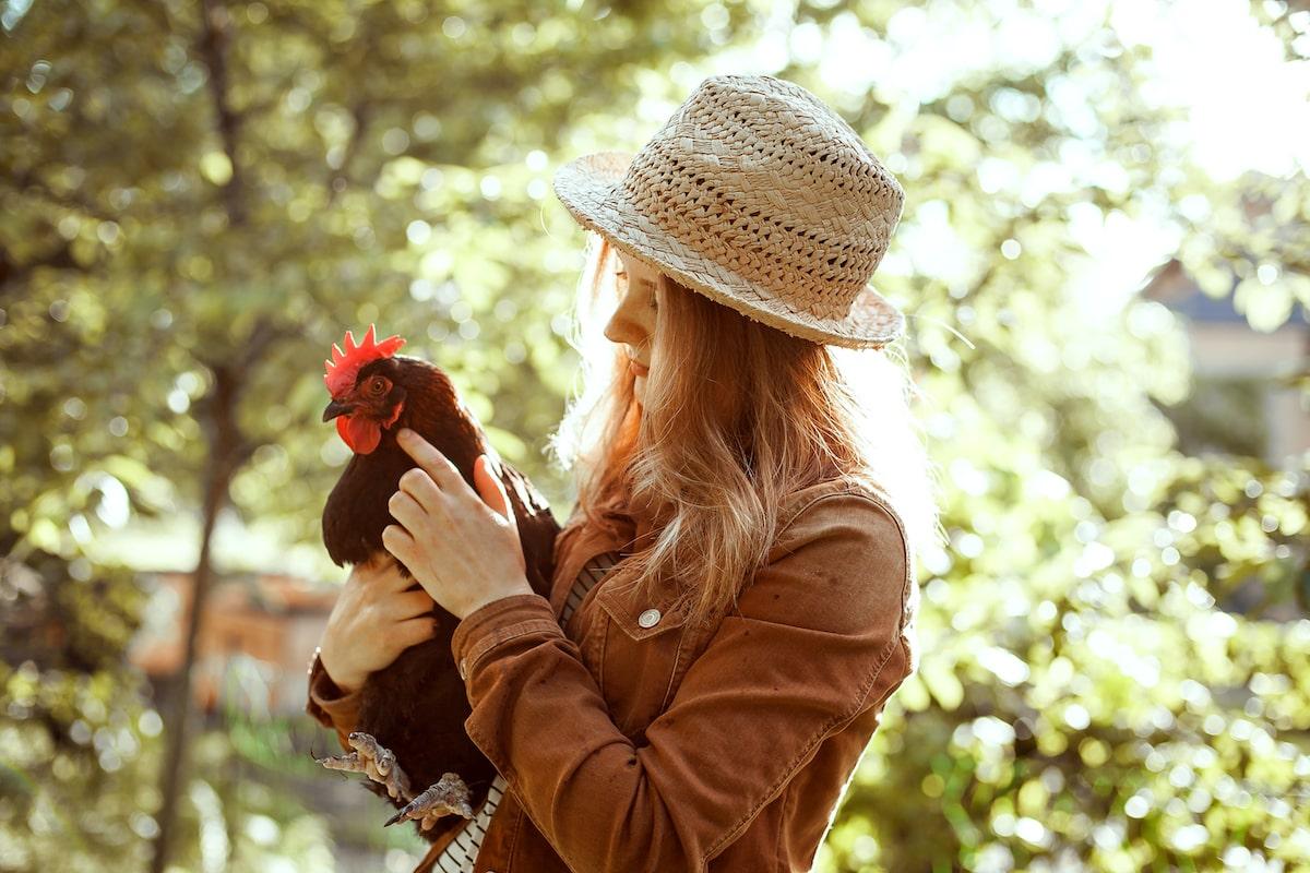 Hühnerhaltung Marie