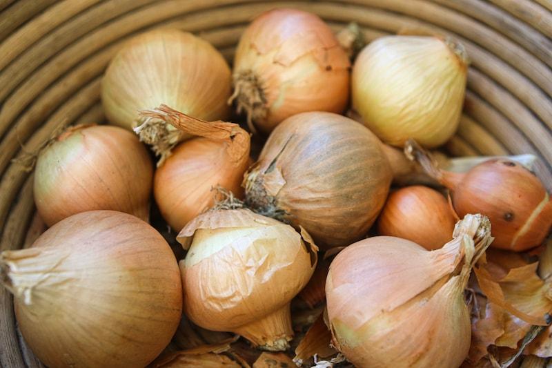 haltbar machen zwiebeln