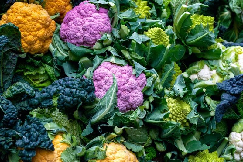 verschiedene Blumenkohl-sorten