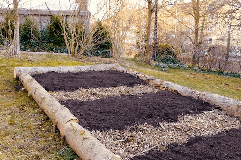 Gemüse anbauen_beete anlegen