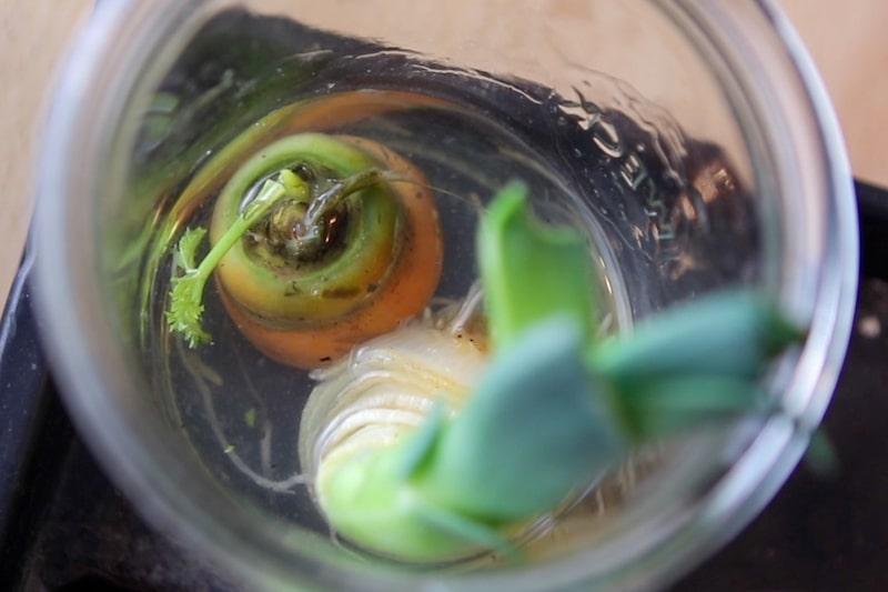 Möhre_und_Lauch-im-Wasserglas