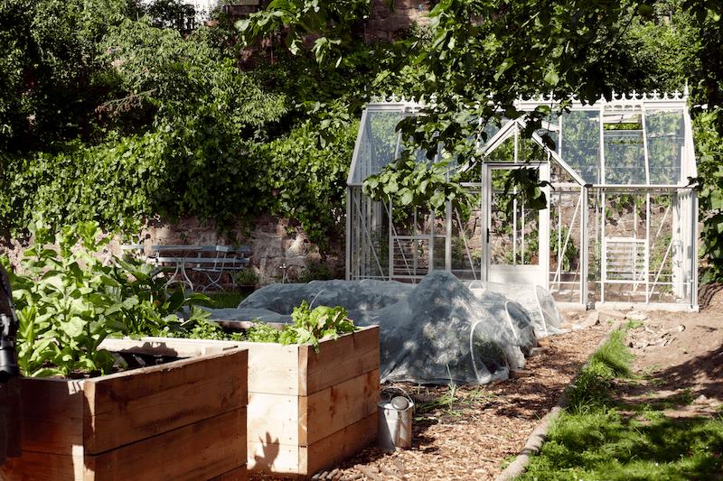 Gartenplan für Gemüsegarten
