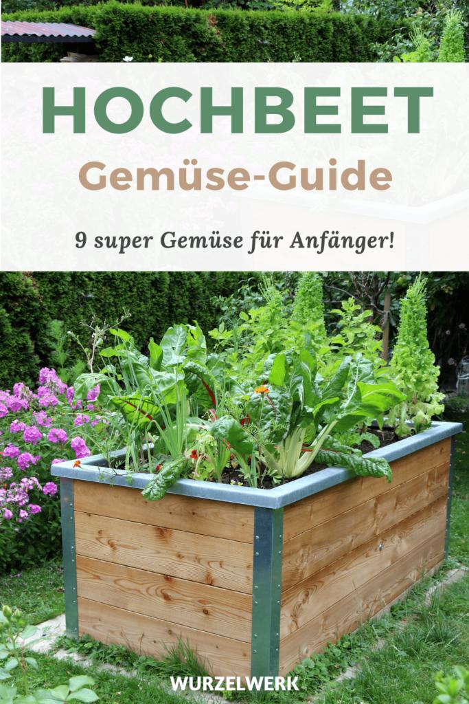 Hochbeet Gemüse-Guide Pinterest Pin