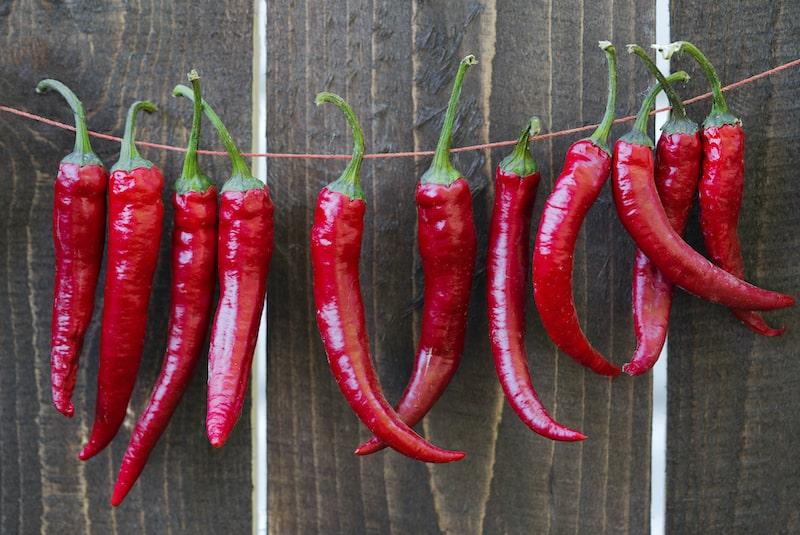 getrocknete Chili