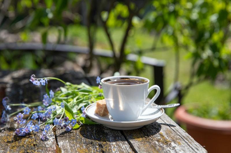 Kaffeesatz Kaffeetasse