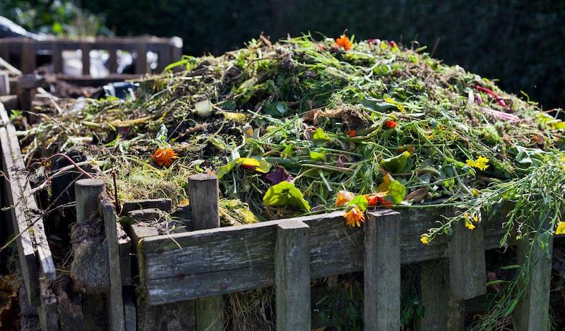 Kompost Gartenabfälle Kaffeesatz